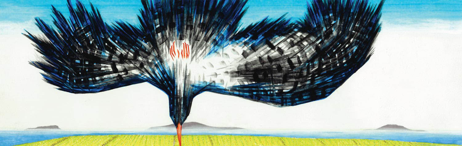 Art inspired by nature. A chough drops from the sky to fields below.