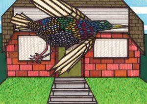 Suburban Starling